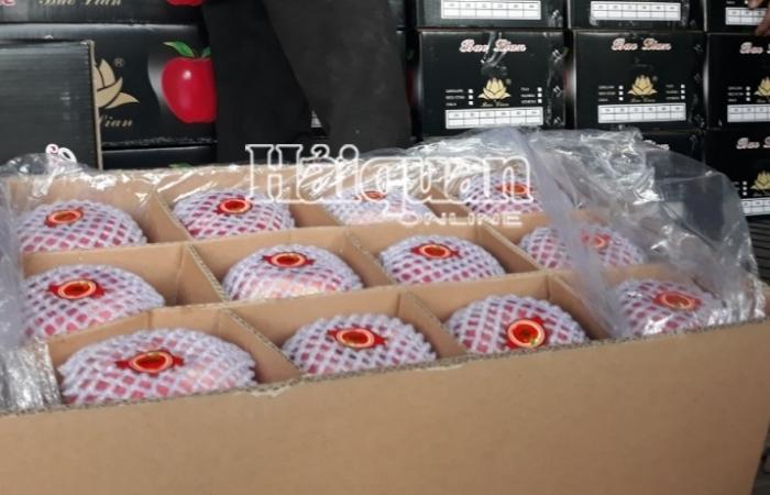 Hải quan cửa khẩu Lào Cai: Kim ngạch xuất khẩu tăng mạnh trên 64%