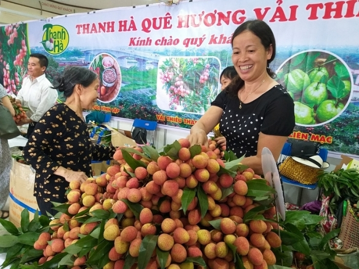 Xuất khẩu hơn 28.000 tấn vải thiều qua cửa khẩu Lào Cai