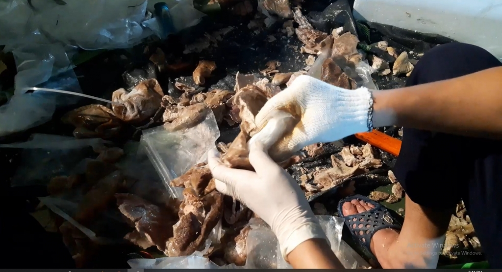 Hình ảnh ngụy trang hàng tạ ma túy giấu trong dạ dày lợn và mô tơ điện
