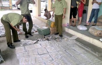 Quảng Nam: Tạm giữ 660 đồng hồ không rõ nguồn gốc