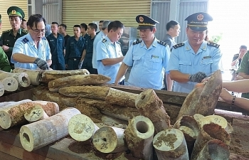Hải quan Đà Nẵng xây dựng được 43 chuyên gia