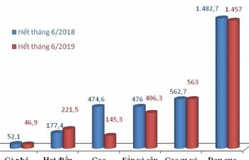 Nông sản gặp khó ở Trung Quốc: Nhìn từ số liệu hải quan