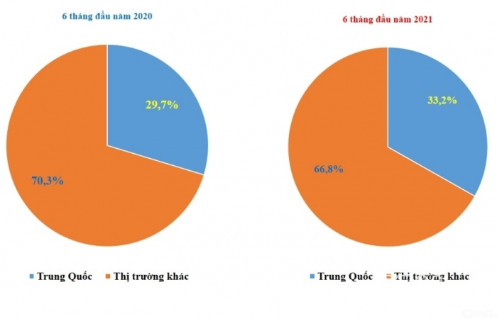 Việt Nam chi gần 160 tỷ USD nhập khẩu hàng hóa, Trung Quốc chiếm 1/3