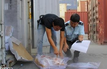 Hàng tạm nhập tái xuất tại Hải quan Hải Phòng giảm mạnh