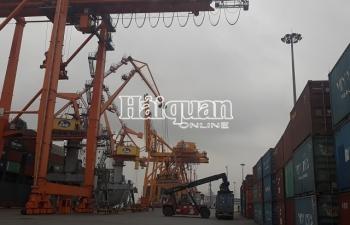 Tạm dừng hoạt động hàng loạt đại lý hải quan khu vực Hải Phòng