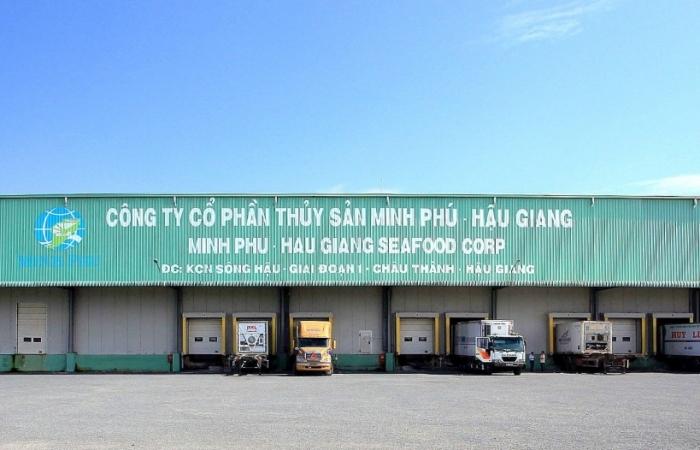 Minh Phú Hậu Giang được gia hạn áp dụng doanh nghiệp ưu tiên về hải quan