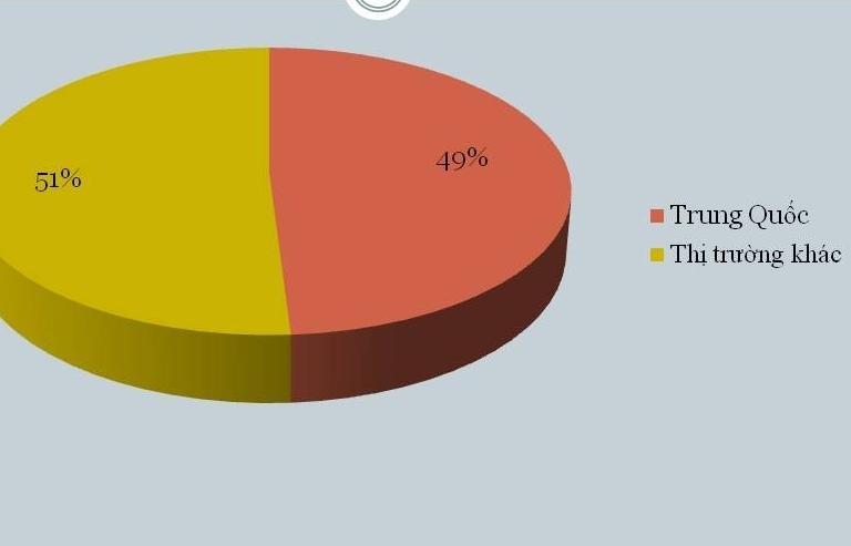 Chi 12 tỷ USD nhập nguyên liệu dệt may, da giày, Trung Quốc chiếm 49%
