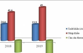Chi 49 tỷ USD nhập khẩu hàng Trung Quốc, tăng hơn 7 tỷ so với 2018