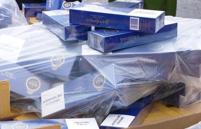 Hải quan Hải Phòng xử lý 10 vụ việc liên quan đến buôn lậu
