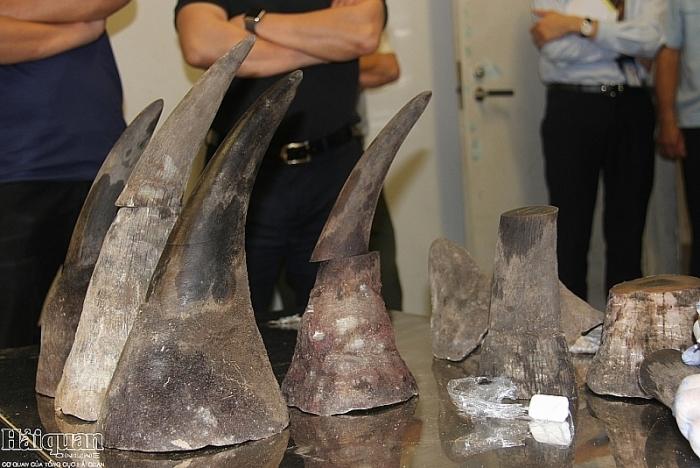 Xét xử 14 vụ án liên quan đến sừng tê giác