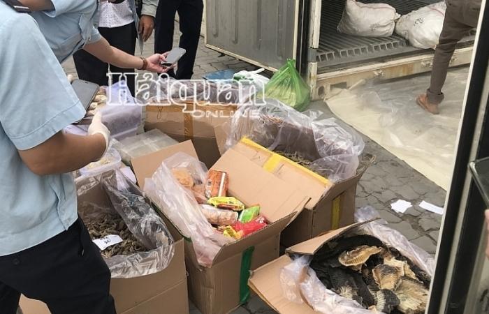 Vụ cá ngựa, tổ yến... nhập lậu trong container sò huyết nhập khẩu tại TPHCM được phát hiện thế nào?