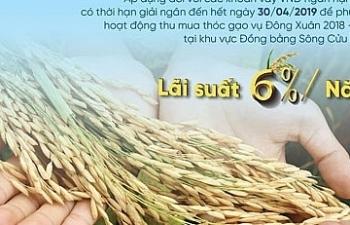 VietinBank cho vay thu mua thóc gạo với lãi suất ưu đãi