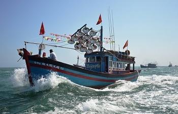 Kiểm tra phản ánh chậm bán bảo hiểm tàu cá