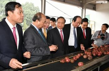Thủ tướng đôn đốc thực hiện nhiệm vụ ngay sau kỳ nghỉ Tết