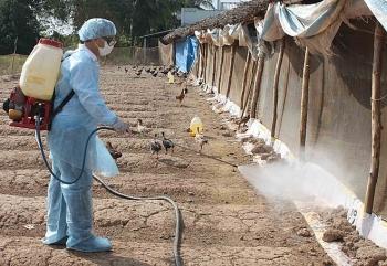 Kế hoạch quốc gia phòng, chống bệnh Cúm gia cầm