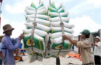 Thủ tướng yêu cầu xuất khẩu gạo phải thận trọng
