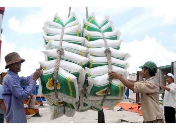 Đề nghị xử lý các thương nhân xuất khẩu gạo không xuất trình đúng, đủ số lượng như đã khai báo