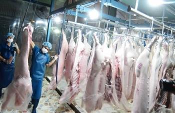 """Thịt lợn đắt đỏ, Bộ CôngThương """"bác"""" lý do khâu trung gian"""