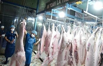 Cấp đông thịt lợn để đảm bảo cung cầu tiêu dùng