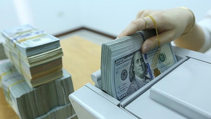 Tiền đồng có thể tăng giá vào năm sau, doanh nghiệp cần phòng vệ rủi ro