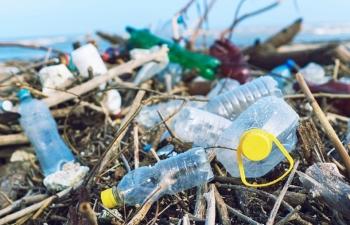 Bảo hộ các sản phẩm đã được công nhận túi ni lông thân thiện môi trường