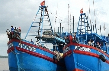 Quy chế hoạt động của Ban chỉ đạo Quốc gia về chống khai thác hải sản bất hợp pháp