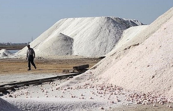 Xúc tiến thương mại, xây dựng nhãn hiệu hàng hóa cho muối xuất khẩu