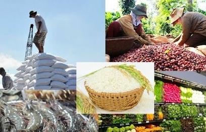 Yêu cầu đẩy mạnh xúc tiến xuất khẩu nông, lâm, thủy sản sau Covid-19