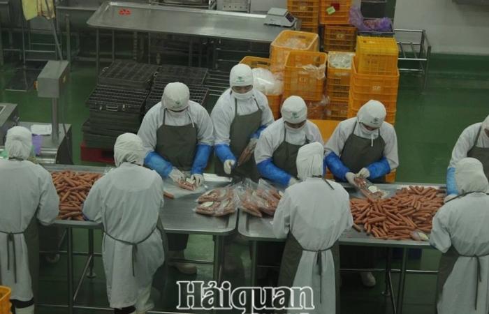 Khẩn trương thành lập ban chỉ đạo phục hồi sản xuất trực thuộc UBND tỉnh
