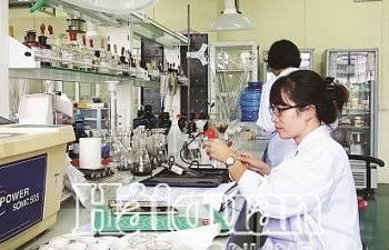 Chính phủ giao nhiệm vụ cho từng bộ về cắt giảm thủ tục kiểm tra chuyên ngành