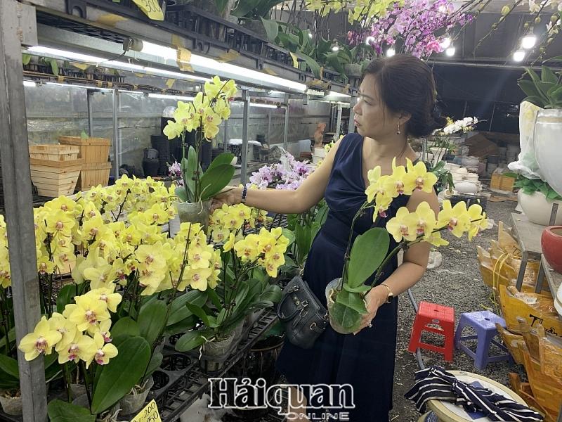 tphcm cho hoa nhon nhip nhung ngay cuoi nam