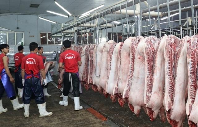Thiếu 0,5 triệu tấn, dự báo giá lợn tăng