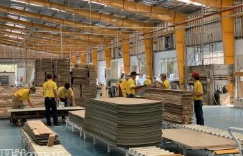 Sản xuất, thương mại đình đốn, ngành gỗ TPHCM kêu cứu