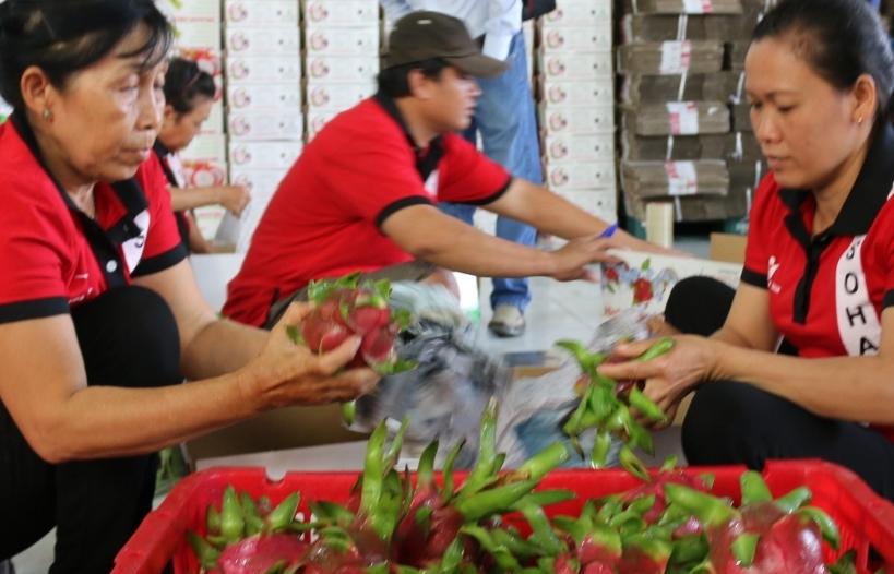 Nguồn cung nông sản xuất khẩu giảm mạnh, lập tức kiến nghị Thủ tướng