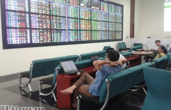 Hai cổ phiếu bị hủy niêm yết do vi phạm công bố thông tin