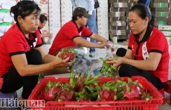 Nghiên cứu thành lập Hiệp hội các doanh nghiệp nông sản Việt – Hàn