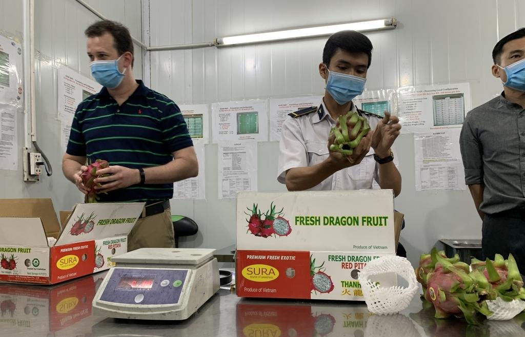 Trái cây Việt Nam lại rộng đường sang Mỹ