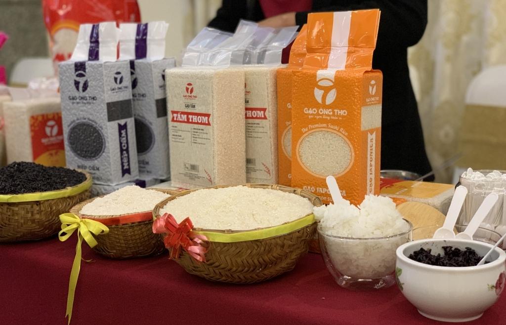 Gạo Việt Nam xuất khẩu vào EU chỉ bằng ¼ Campuchia