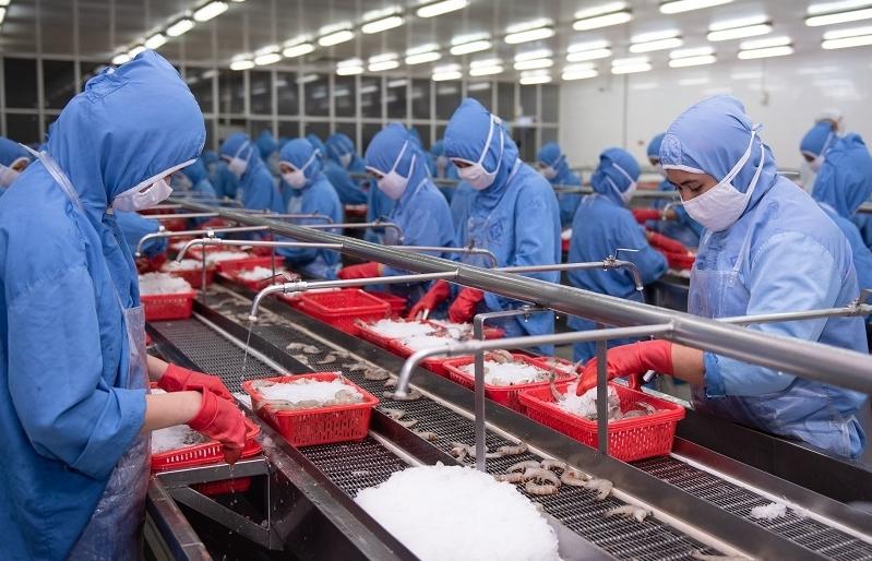 Doanh nghiệp thủy sản khép dần nhà máy vì thiếu công nhân