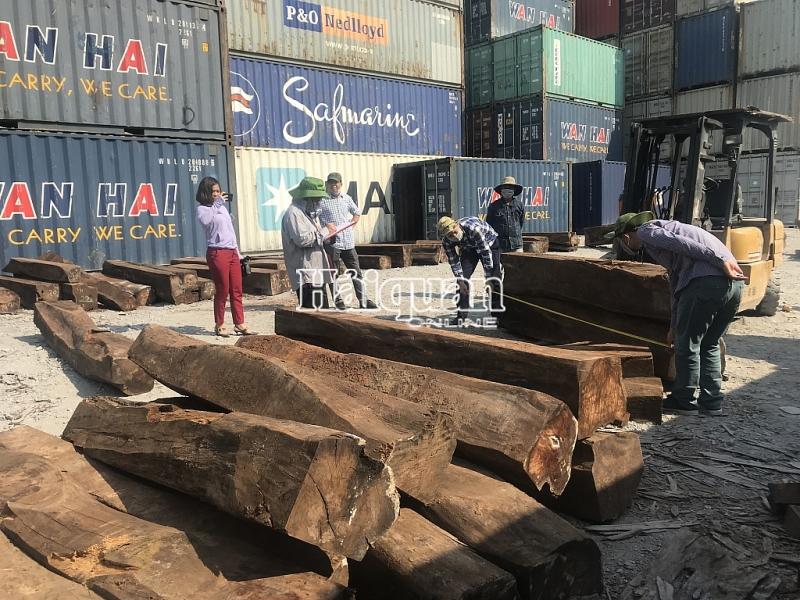 Hình ảnh bắt giữ 50 container gỗ quý | An ninh XNK