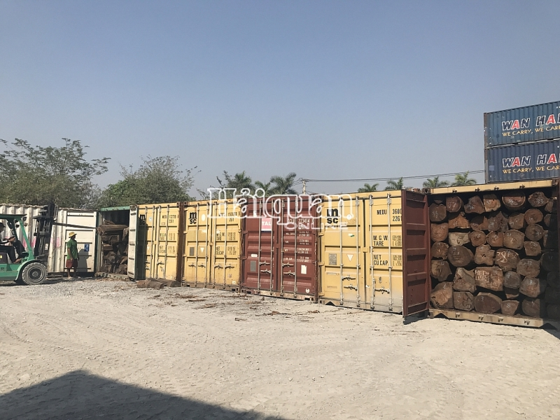 hinh anh bat giu 50 container go quy