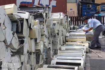TPHCM: Hàng trăm doanh nghiệp vi phạm về kiểm tra chuyên ngành