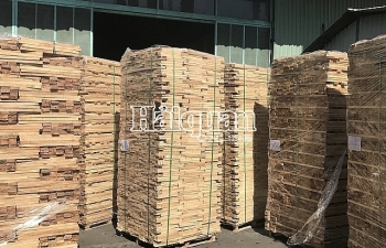 Doanh nghiệp xuất khẩu 111 container gỗ bị phạt và truy thu thuế gần 7 tỷ đồng