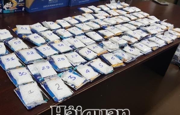 Xe ô tô vận chuyển ma túy treo lo go giả Đài Truyền hình Việt Nam