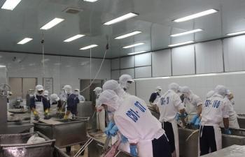 Xuất khẩu cá ngừ sang Trung Quốc tăng đột biến