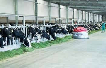 """Vinamilk sở hữu """"Hệ thống trang trại chuẩn Global G.A.P lớn nhất châu Á"""""""