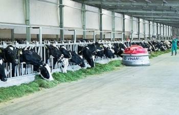 Công ty bò sữa của Vinamilk lọt top tăng trưởng nhanh nhất Việt Nam