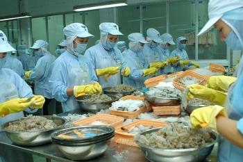 Việt Nam duy trì vị trí số 1 cung cấp tôm cho Nhật Bản