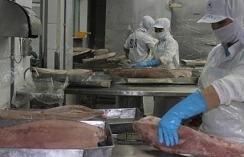 Thủy sản xuất khẩu sang Trung Quốc đang bị ảnh hưởng vì nhân dân tệ mất giá