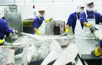 Hàng thủy sản tiêu thụ nội địa gặp vướng